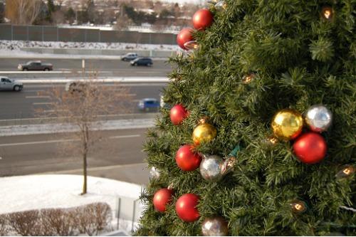 AAMI calls for a fatality-free festive season