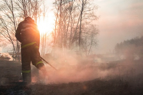 NIBA offers broking support to bushfire victims