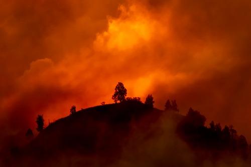 AIA Australia, CommInsure activate bushfire assistance package