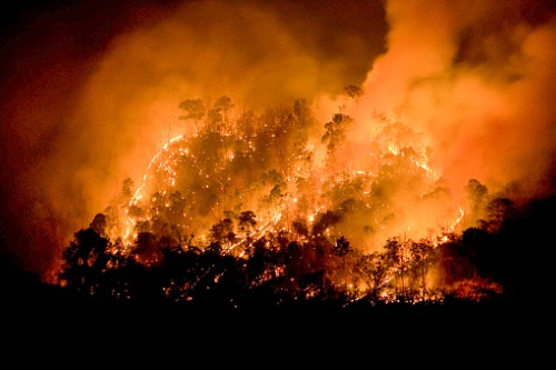 AM Best: Insurers can contend with mounting bushfire losses