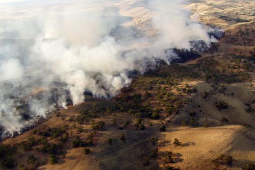 Indigenous rangers stop fire mitigation work as insurance premiums soar