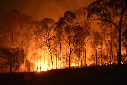Gallagher Bassett on how climate change is impacting insurance