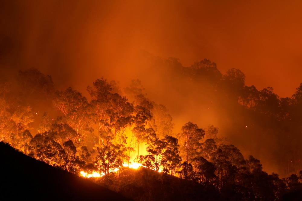 PERILS unveils final loss estimate for 2019-20 Australian bushfires