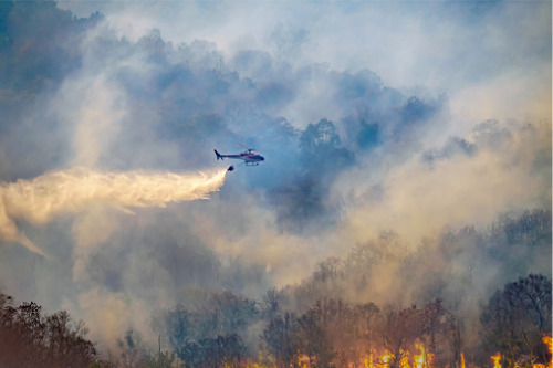 Zurich reports on lessons learned from devastating Tasmanian bushfires