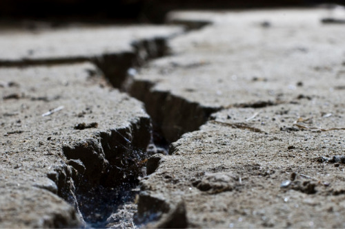 Allianz outlines support for earthquake-hit customers