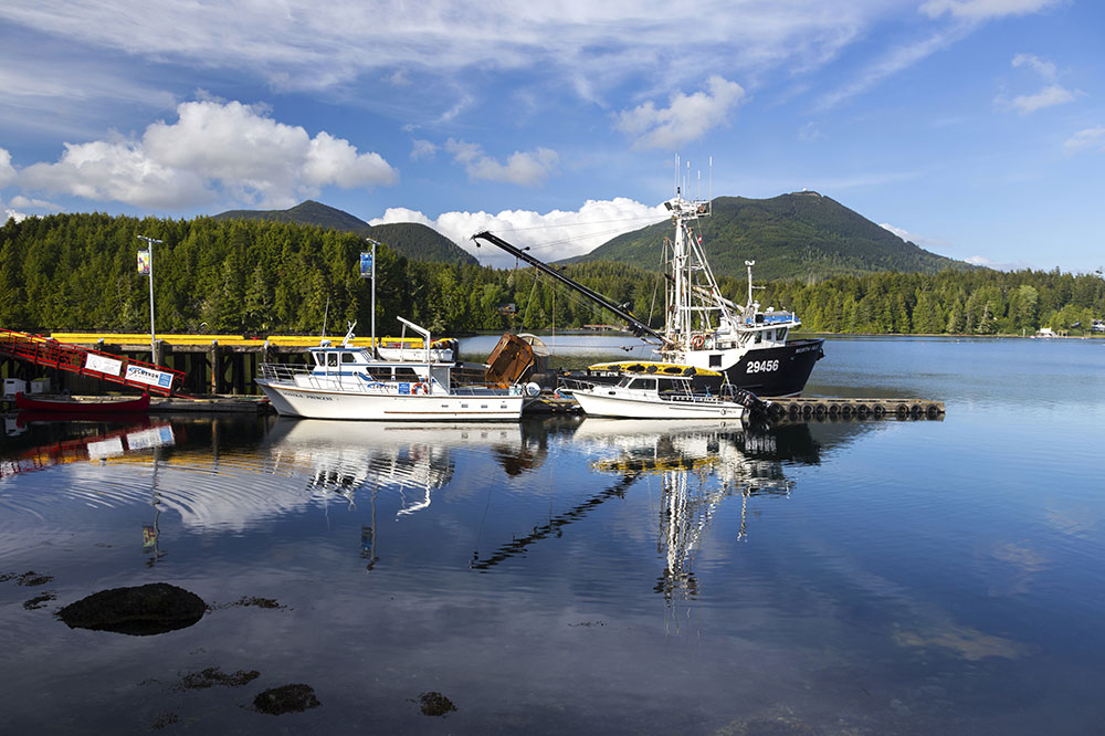 Government amends regulations for certain minor fishery offences