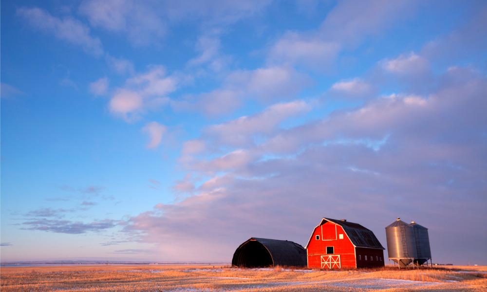 Saskatchewan extends enrollment to AgriStability financial assistance program