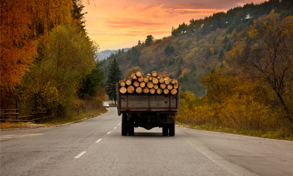 Ontario government announces protective measures for forestry industry