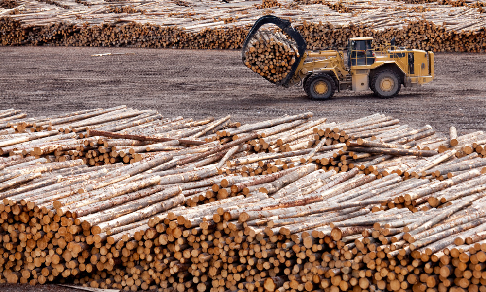 Lumber firm fined $15K following two fatal injuries