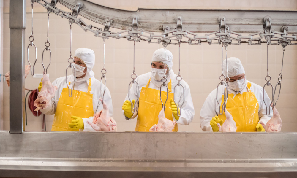 Federal government invests for safety of workers at Prairie meat plants