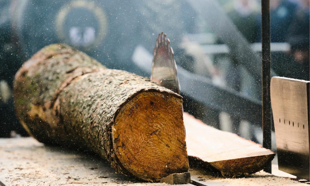 New Brunswick jury recommends safety improvements at sawmill operations