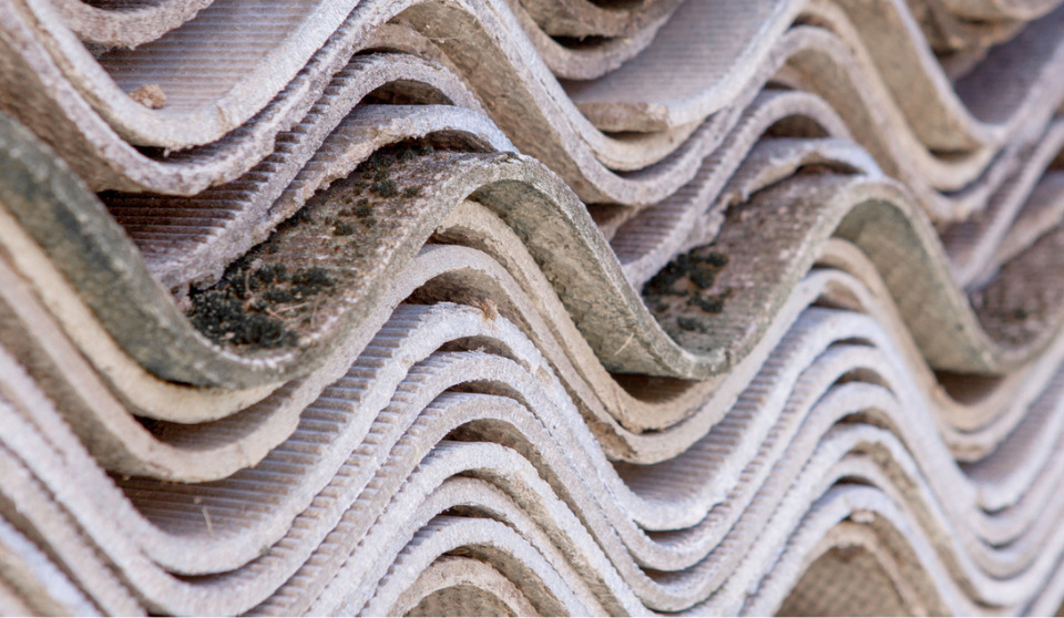 Asbestos, mould: home and work hazards