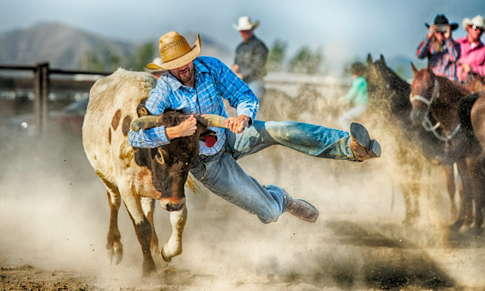 NZ Animal Law Association challenges agriculture minister on rodeo ban inaction