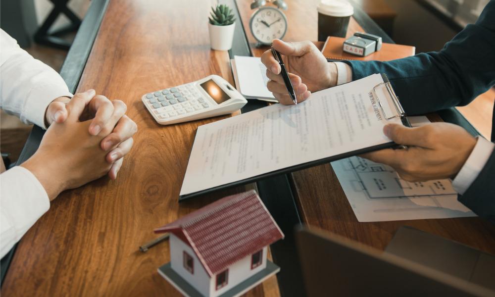 Scheme brings surge in new buyers